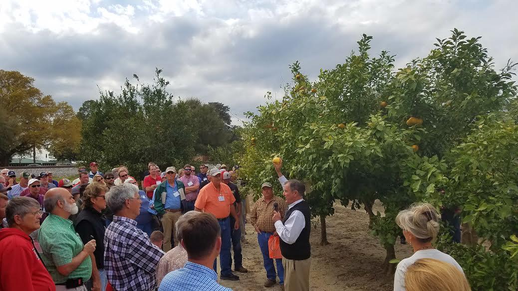 Citrus Association Meeting